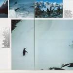 TERRE SAUVAGE Magazine - prisonniers des glaces [2/7]