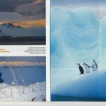 TERRE SAUVAGE Magazine - prisonniers des glaces [3/7]