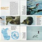 TERRE SAUVAGE Magazine - prisonniers des glaces [5/7]