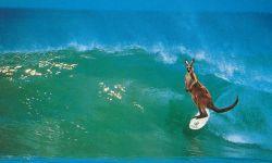 Surfen - die große Leidenschaft der Australier und ihrer Ureinwohner