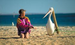 Heide mit Pelikan